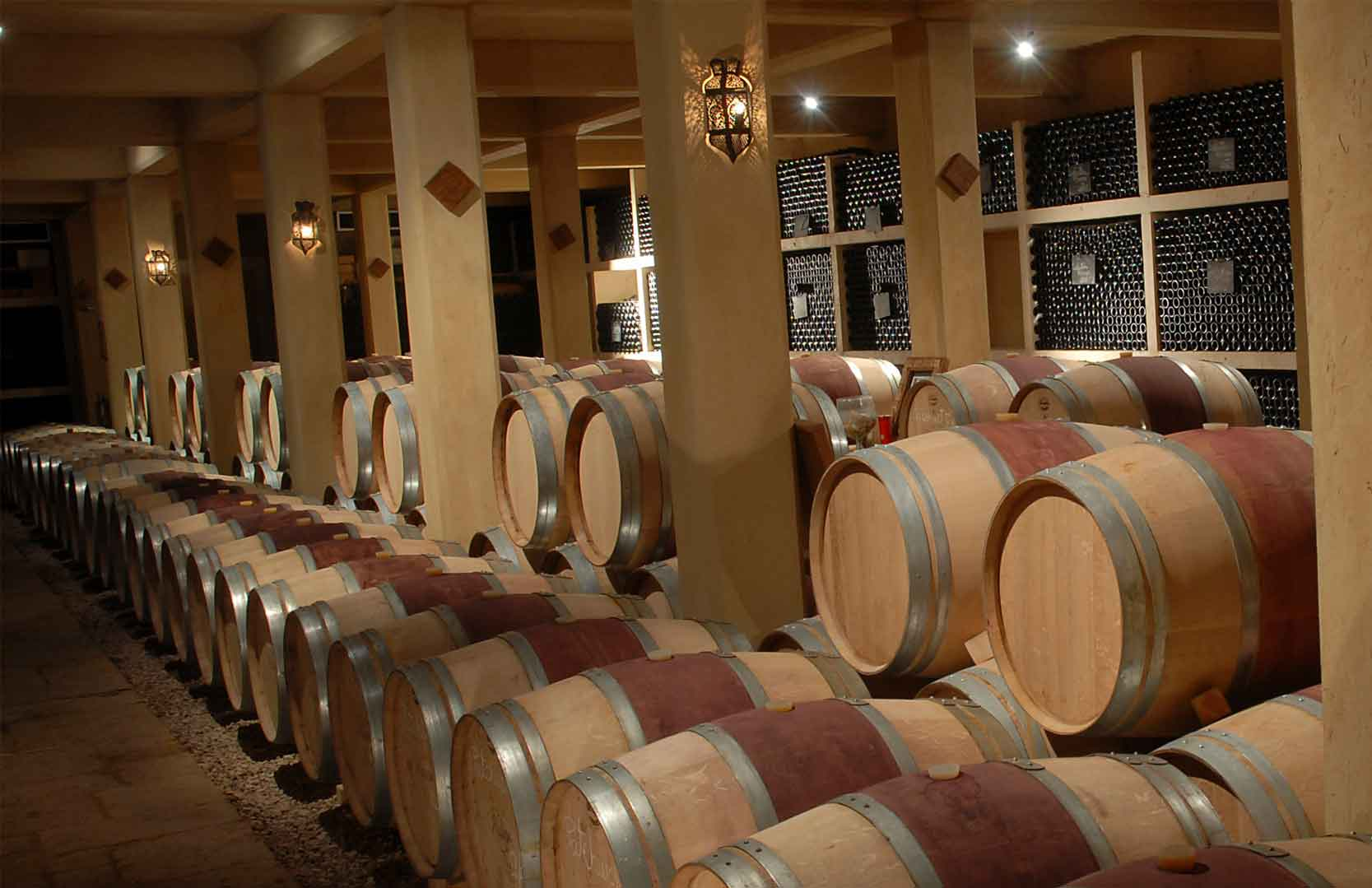 Weinkeller von Massaya
