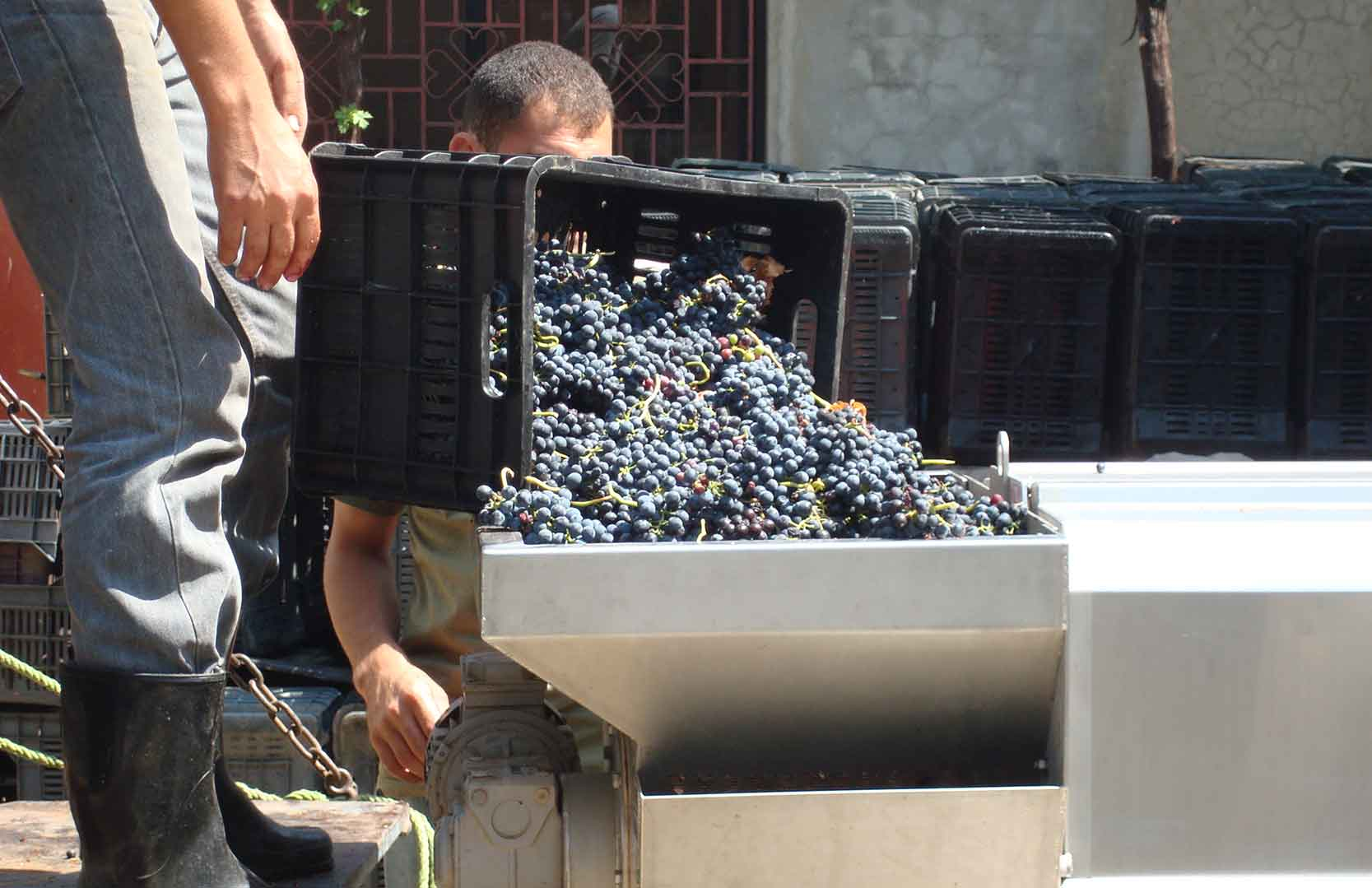 Weinpresse bei Chateau Heritage