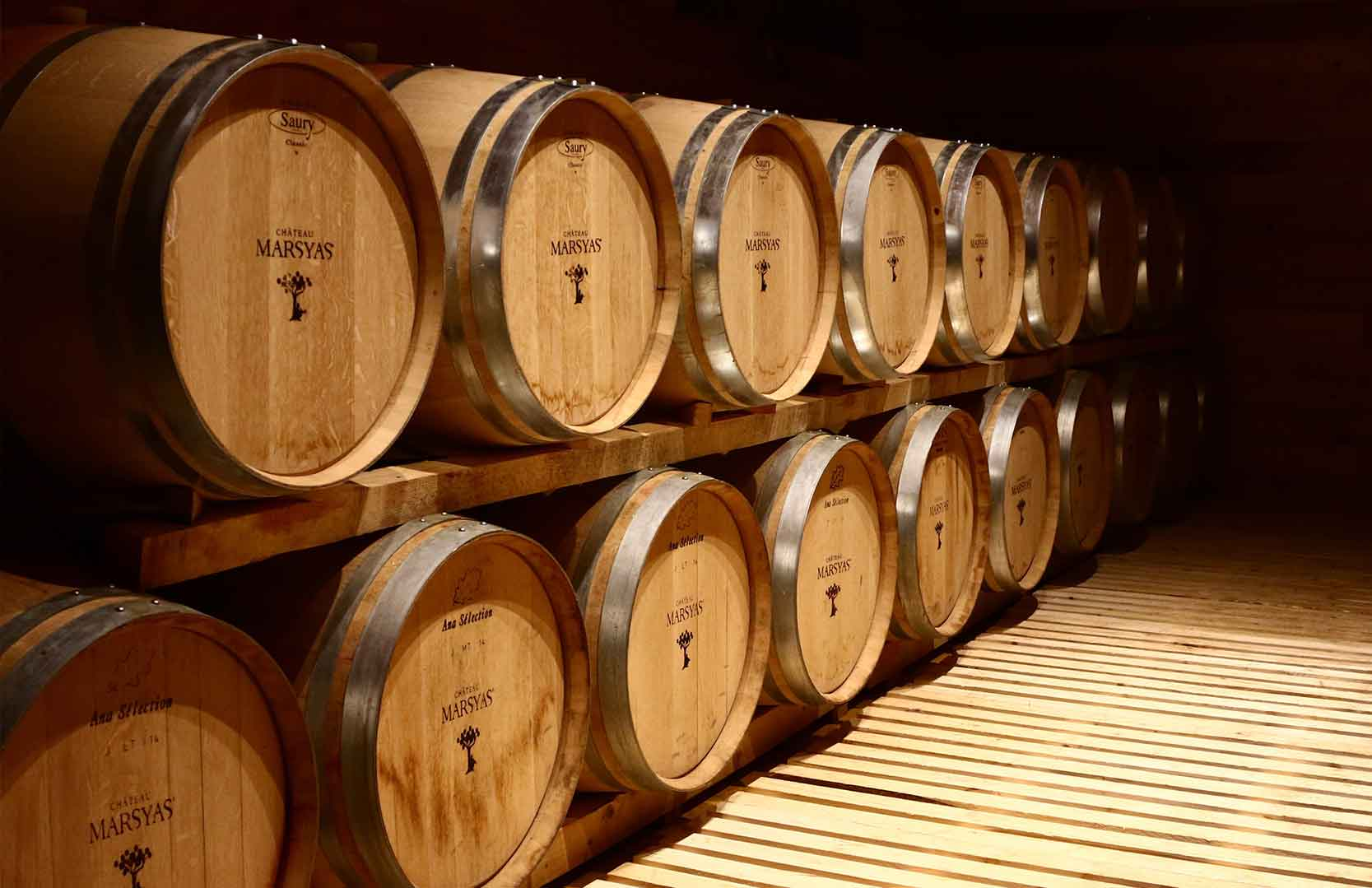 Barriques des libanesischen Weingutes Chateau Marsyas